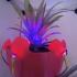 Led Based Decoration Pot image