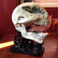 Venom skull with base
