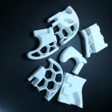 Picture of print of Stratocaster Honeycomb Body