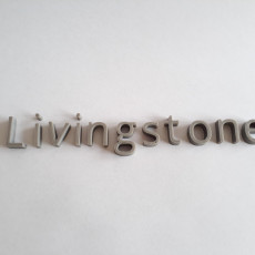 Picture of print of livingstone