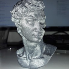 Picture of print of David's Cranium This print has been uploaded by Olivier