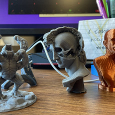 Picture of print of David's Cranium