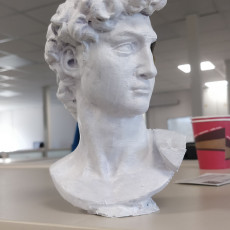 Picture of print of David's Cranium This print has been uploaded by Çağrı Mert