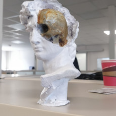 Picture of print of David's Cranium