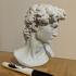 David's Cranium image