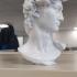 David's Cranium print image