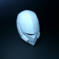 Picture of print of Destiny Swordflight Helmet
