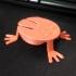 Jumping Frog image