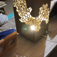 Picture of print of Voronoi Lamp