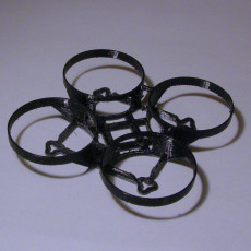 Picture of print of Brushless Mighty Whoop
