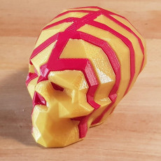 Picture of print of Interlocking Low-Poly Skulls This print has been uploaded by fab 2 fab