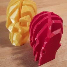 Picture of print of Interlocking Low-Poly Skulls