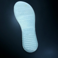 Picture of print of sole001
