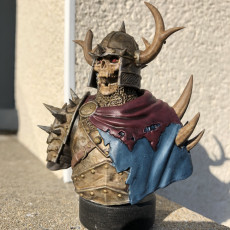 Picture of print of Razduun - Undead Lord