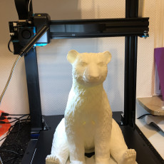 Picture of print of Christmas Polar Bear