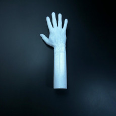 Picture of print of Lego Hand