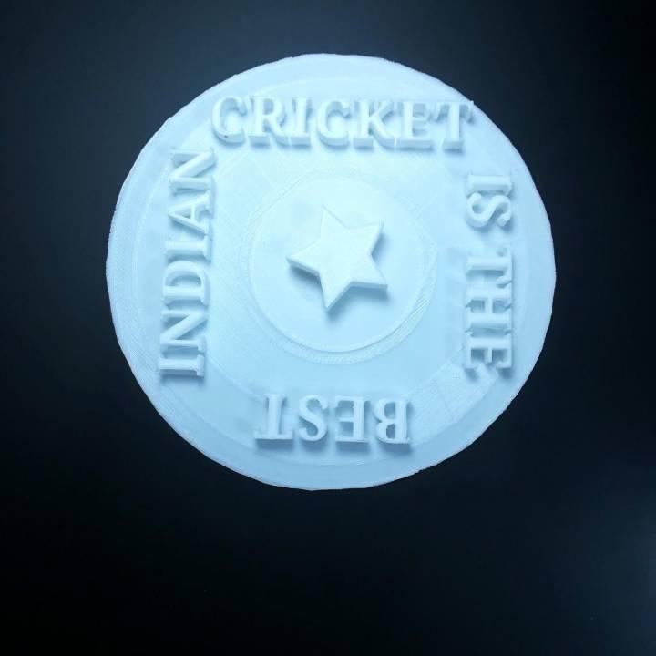 Indian cricket logo