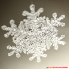 Real snowflake - Christmas Tree decoration - size: 65mm