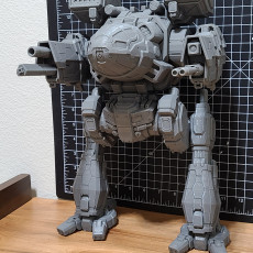 Picture of print of MWO Mad Cat MKII