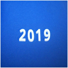 Picture of print of 2019 Font