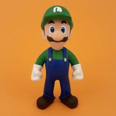 Luigi from super Mario bros