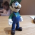 Luigi from super Mario bros image