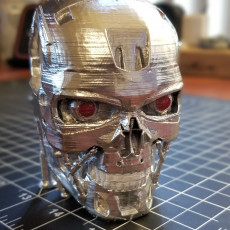 Picture of print of Terminator T800 Bust This print has been uploaded by Mike Perales