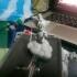goku on the flying cloud image