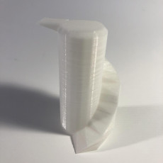 Picture of print of Spiral Ramp