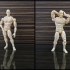 3DPrintable Male Articulated Figure image