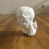 Untitled 3D Scan 2018-12-04 print image