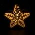 Star Light image