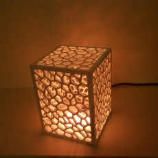 Cell Structure Lamp