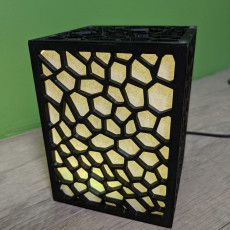 Picture of print of Cell Structure Lamp
