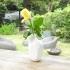 "vase soliflore "" carve "" image"