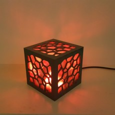 Cell Structure Lamp 2