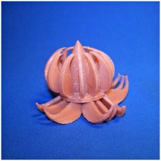 Picture of print of lotus lamp by swar