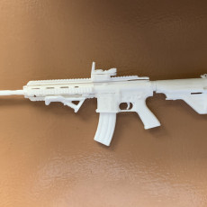 Picture of print of Red Dot Sight & Angled Foregrip