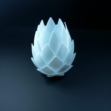 Picture of print of pinecone with hole This print has been uploaded by Li WEI Bing