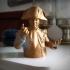 Napoleon Bust. image