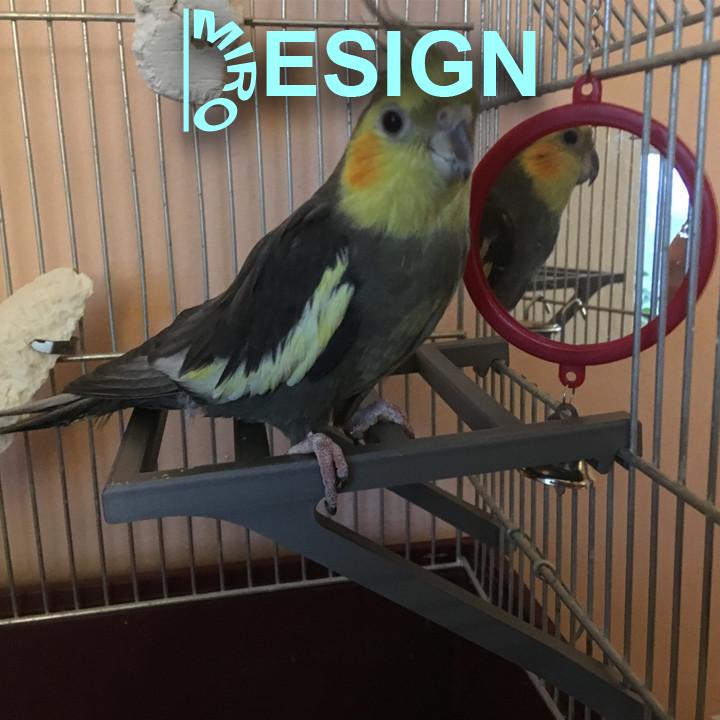 Pet Bird Parrot Chew Toy