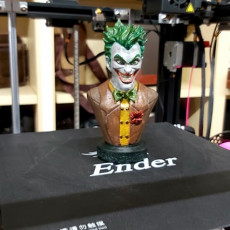 Picture of print of Joker bust