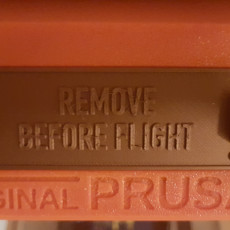 Picture of print of Prusa i3 Mk3 LCD Cover - REMOVE BEFORE FLIGHT