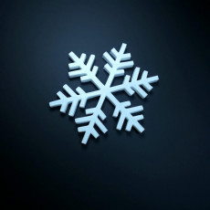 Picture of print of Snowflake