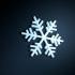 Snowflake print image