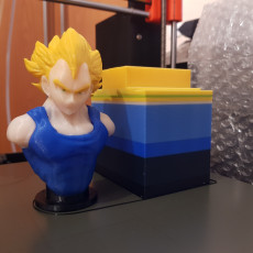 Picture of print of Muti-Coloured Vegeta Bust