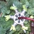 Fuel injector snowflake image