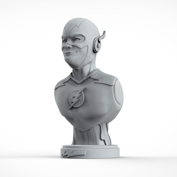 The Flash bust