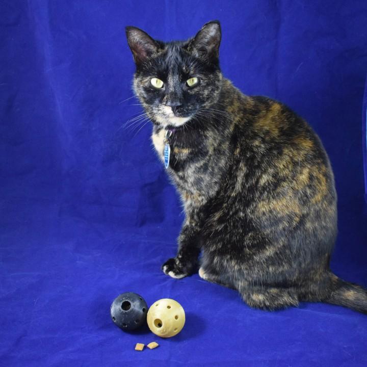 Cat Treat Ball Dispenser