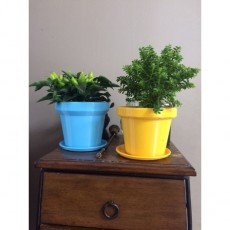 Flower pot  So Classic